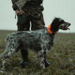 Come vestirsi per avere successo nella caccia